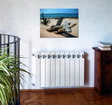 Радиаторы отопления в доме
