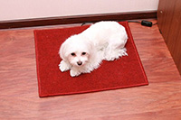 Теплый пол электрический под коврик